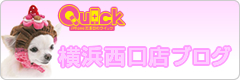 iPhone修理のクイック 横浜西口店ブログ