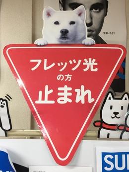 大和本店 ヒカリコラボ 5000円引き!