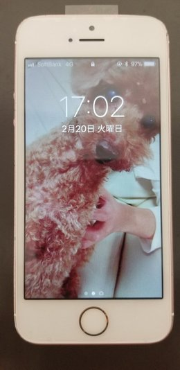 iPhone SE水没復旧事例